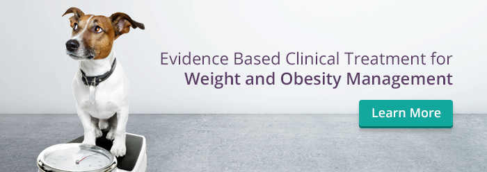 Weight & Obesity Management Belfast